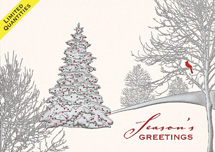 Peaceful Observer Holiday Cards